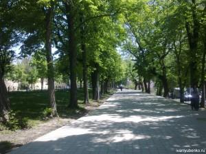 Ставрополь. Николаевский проспект.