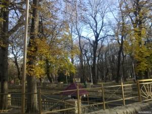Пруд Центрального парка